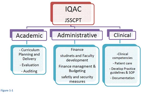 jssphysiotherapy-structure-and-mechanism-of-IQAC